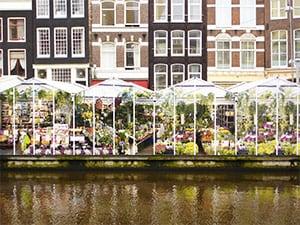 flower-market-amsterdam