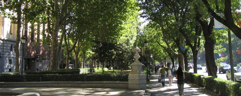 paseo-madrid