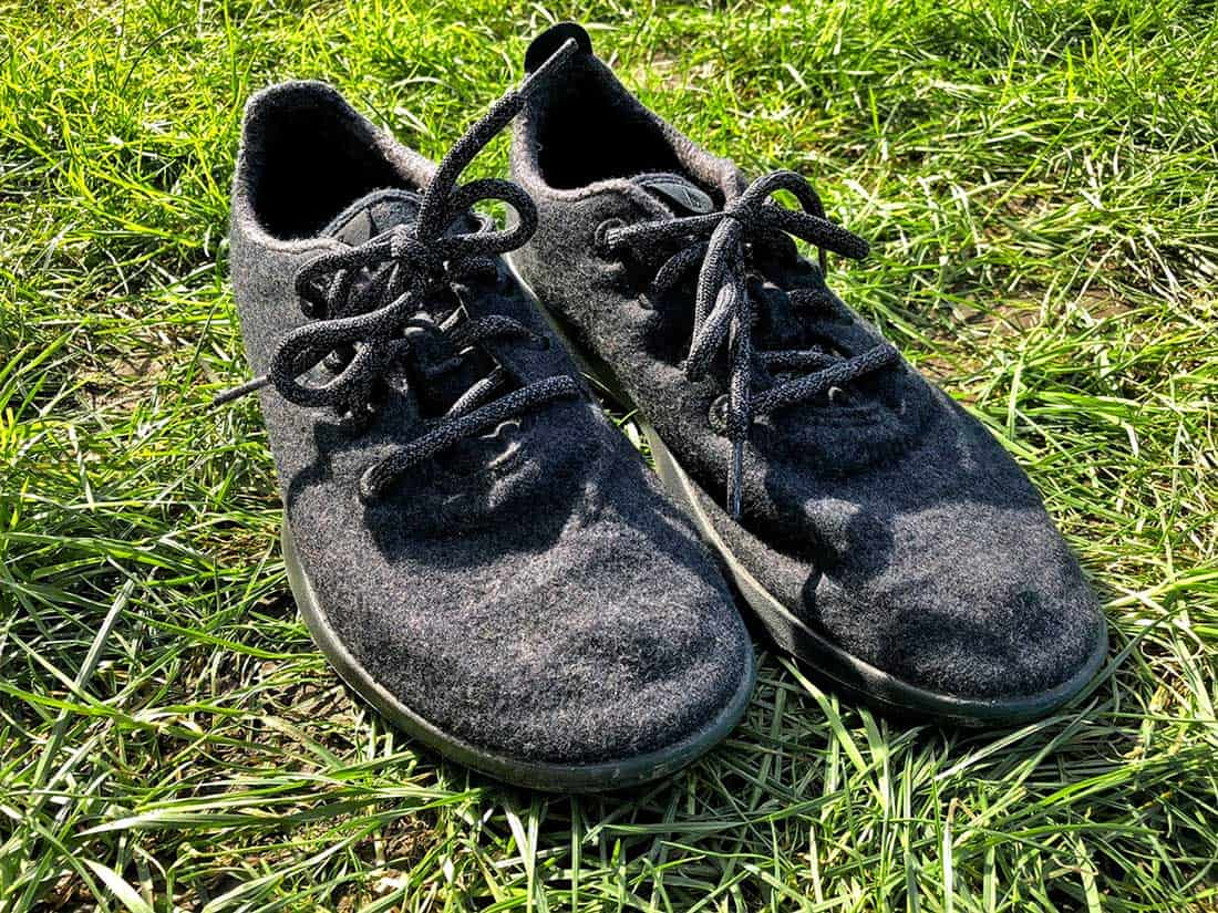 new concept 892c8 c8268 We first heard of Allbirds shoes about back in 2016 when our friend from  New Zealand was wearing them. She claimed these shoes (which were made from  New ...