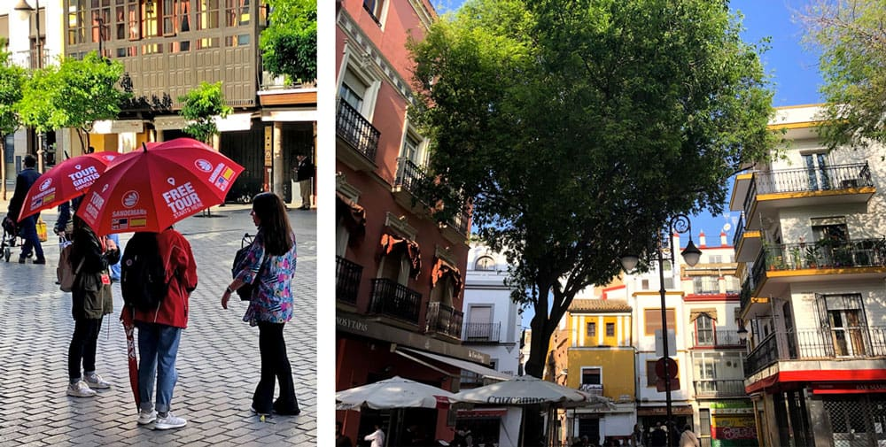 Free Walking Tour of Seville