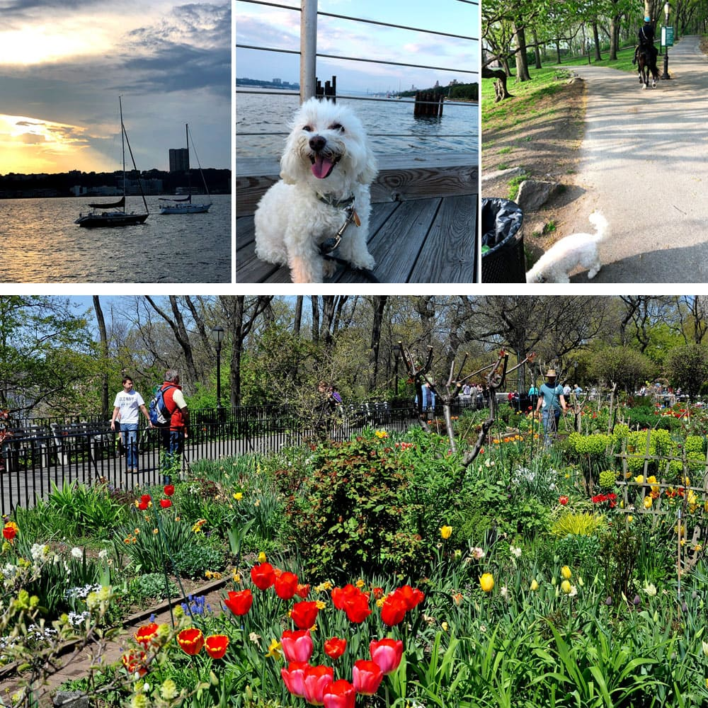 Riverside Park | Things To Do In New York City